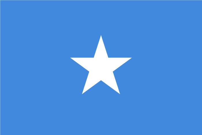 Drapeau De Somalie